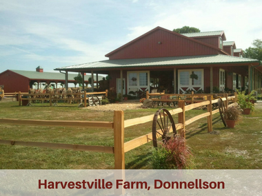 Meet the Byway: Harvestville Farm in Donnellson ...