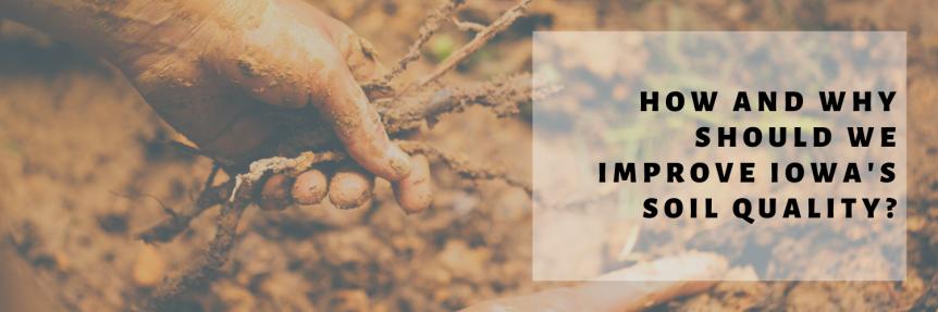 Pathfinders - Improve Soil Quality